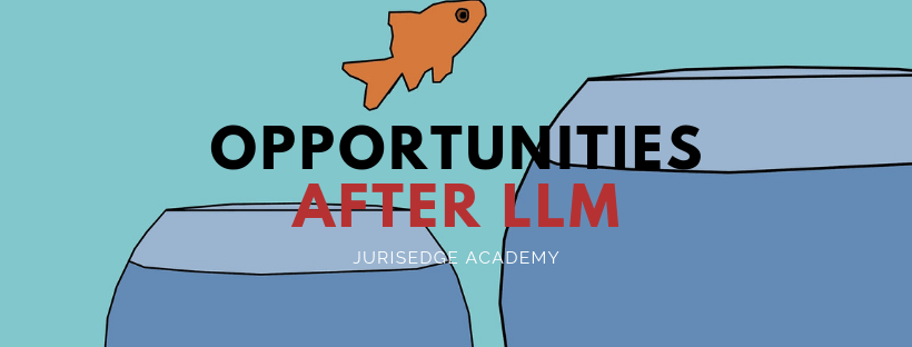 WHAT TO DO AFTER PURSUING LLM?